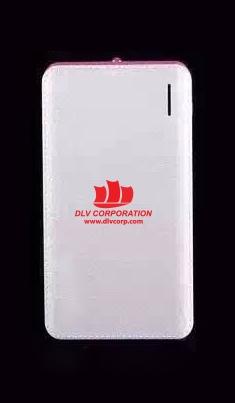 PDV-018-Pin-sac-du-phong-in-khac-logo-doanh-nghiep-7-1487584489.jpg
